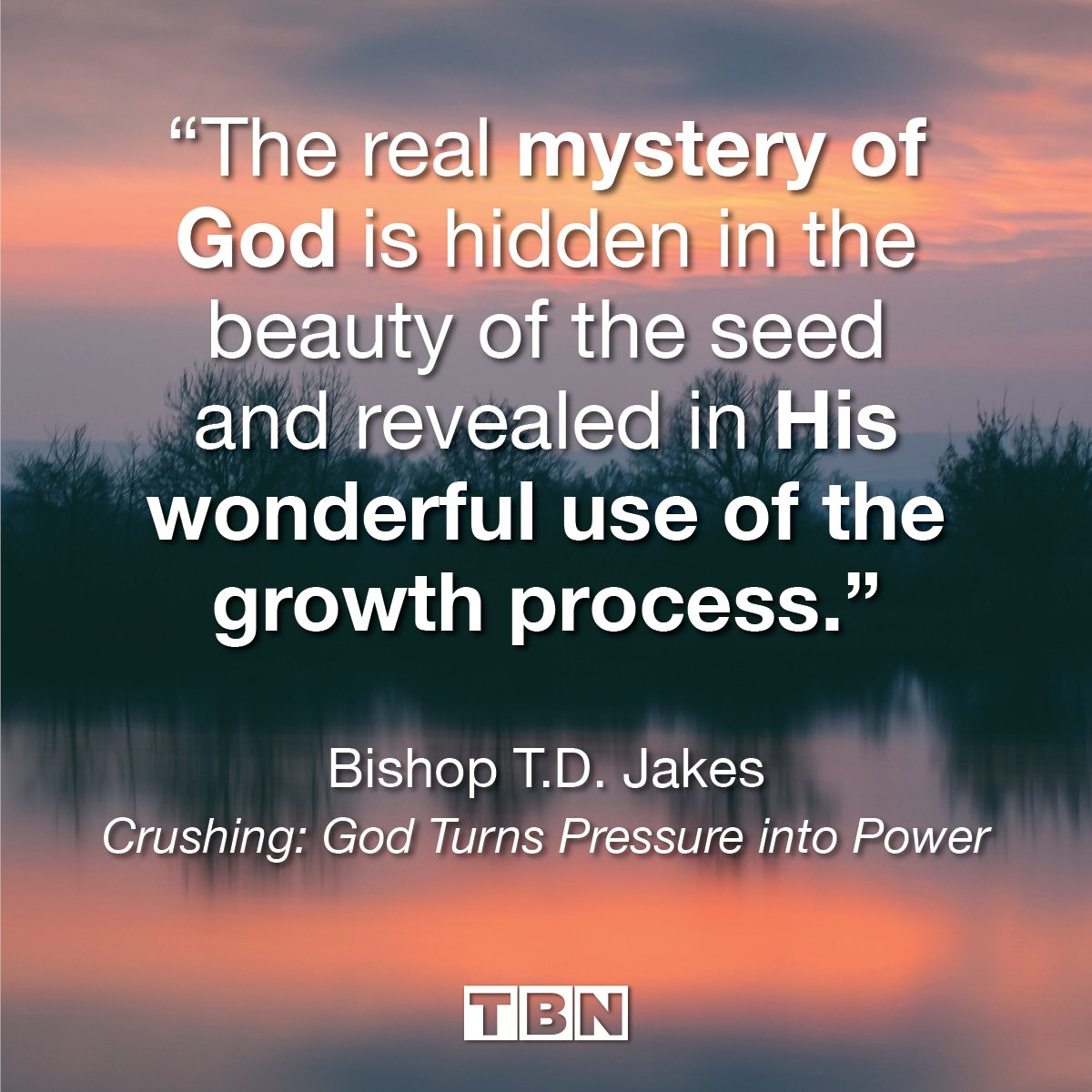 """""""The real mystery of God is hidden in the beauty of the seed and revealed in His wonderful use of the growth process."""" - Bishop T.D. Jakes, Crushing: God Turns Pressure into Power  #QOTD #quoteoftheday https://t.co/WBUkcM7r7o"""