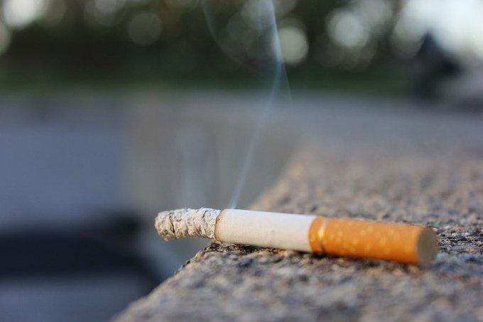 Verpakking sigaretten en shag verplicht andere kleur https://t.co/ruX9Alrn5V https://t.co/QaAlcQ7bOw