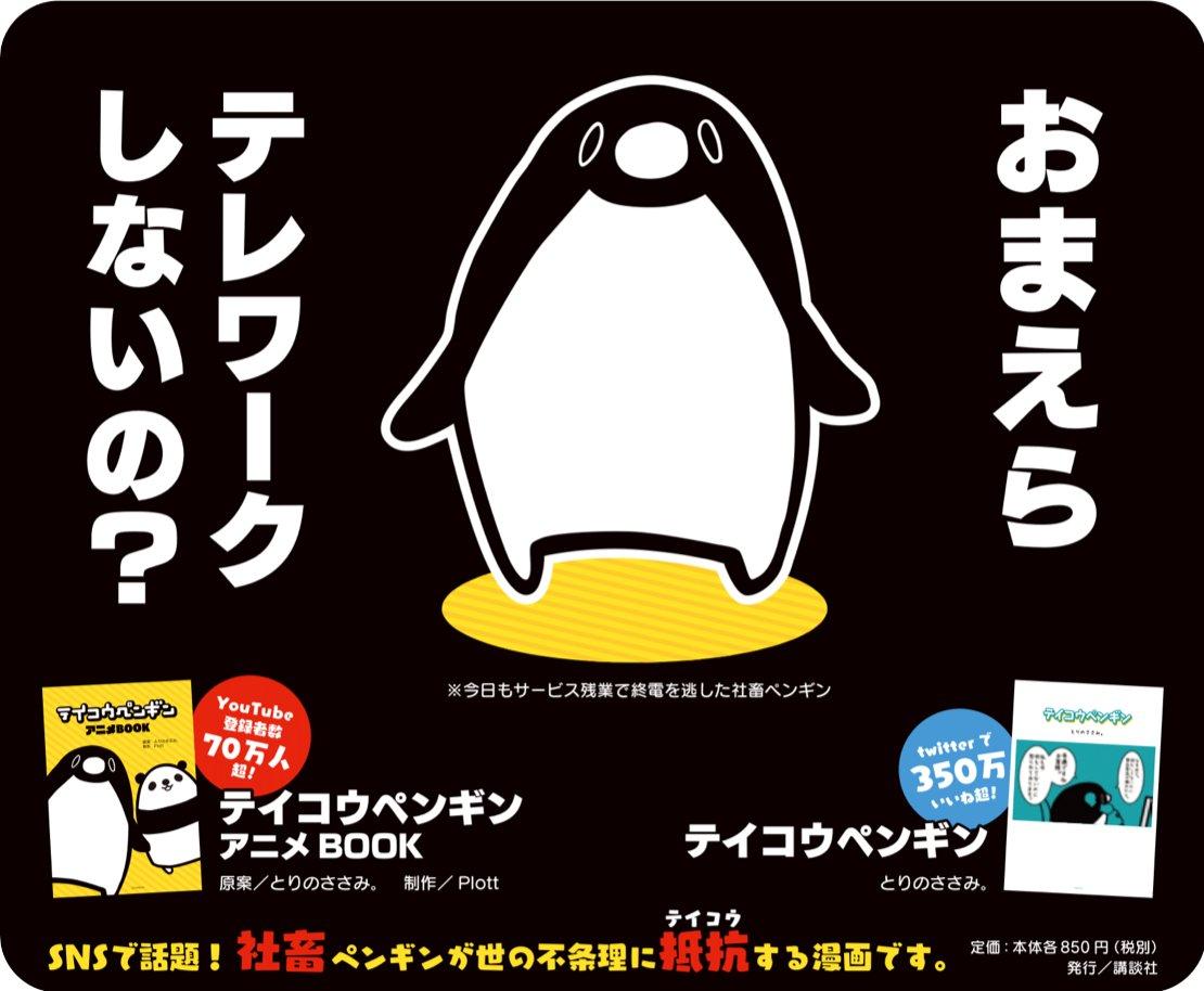 ペンギン グッズ コウ テイ