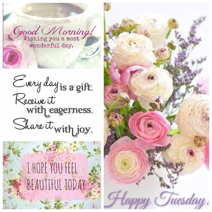 Good Morning, Dear Friends🌷Have A Lovely and Blessed  Tuesday🙏🏻🕊 https://t.co/Lc7fR7RqSP
