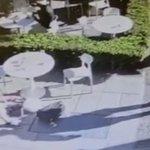 Image for the Tweet beginning: El policía murió en Palermo