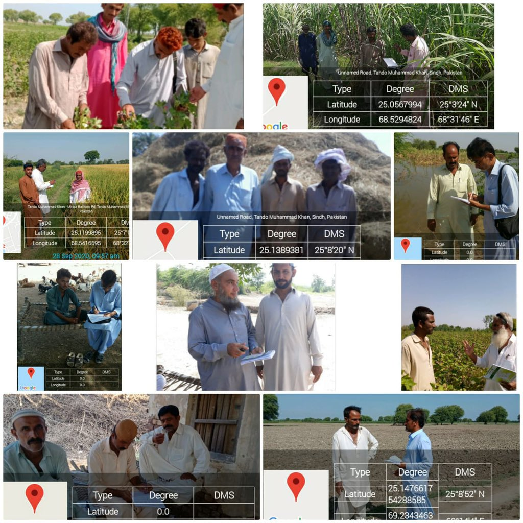 #DailyFieldDiaries  250 Field Assistants on their regular advisory visit to #farmers for crops, seed, pesticides & water dosage etc. #SindhAgriculture also offers services on call 📞 03111646111.  #Productivity in #agriculture, #GDP & #FoodSecurity for #Sindh. https://t.co/OZxFKxGIND