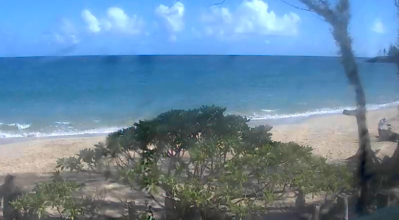 PAIA BAY, NORTH SHORE MAUI • TUESDAY, SEPTEMBER 29TH ~ Live WebCam: https://t.co/ePh9bX4GSp #paia #paiabay #maui #mauinorthshore #haiku #northshore #hookipa #baldwinbeach #windsurfing #kiting #surf #standuppaddleboarding #kitesurfing #surfing #hydrofoiling #sup #hydrofoilsurfing https://t.co/wjSboIzQsD