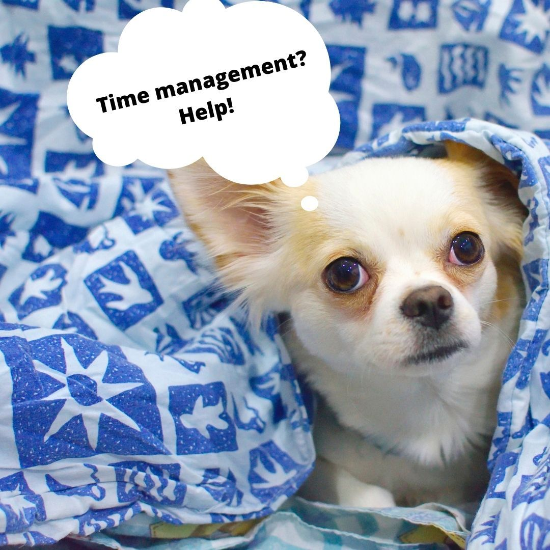 Time management is a learned skill! It is a great way to minimize feeling overwhelmed. Avoid burnout by setting a schedule and sticking to it. Write down your tasks and tackle each one, you've got this!  #timemanagement #middleschool #learningtip #tuesdaytip https://t.co/yjr7oQU4WT