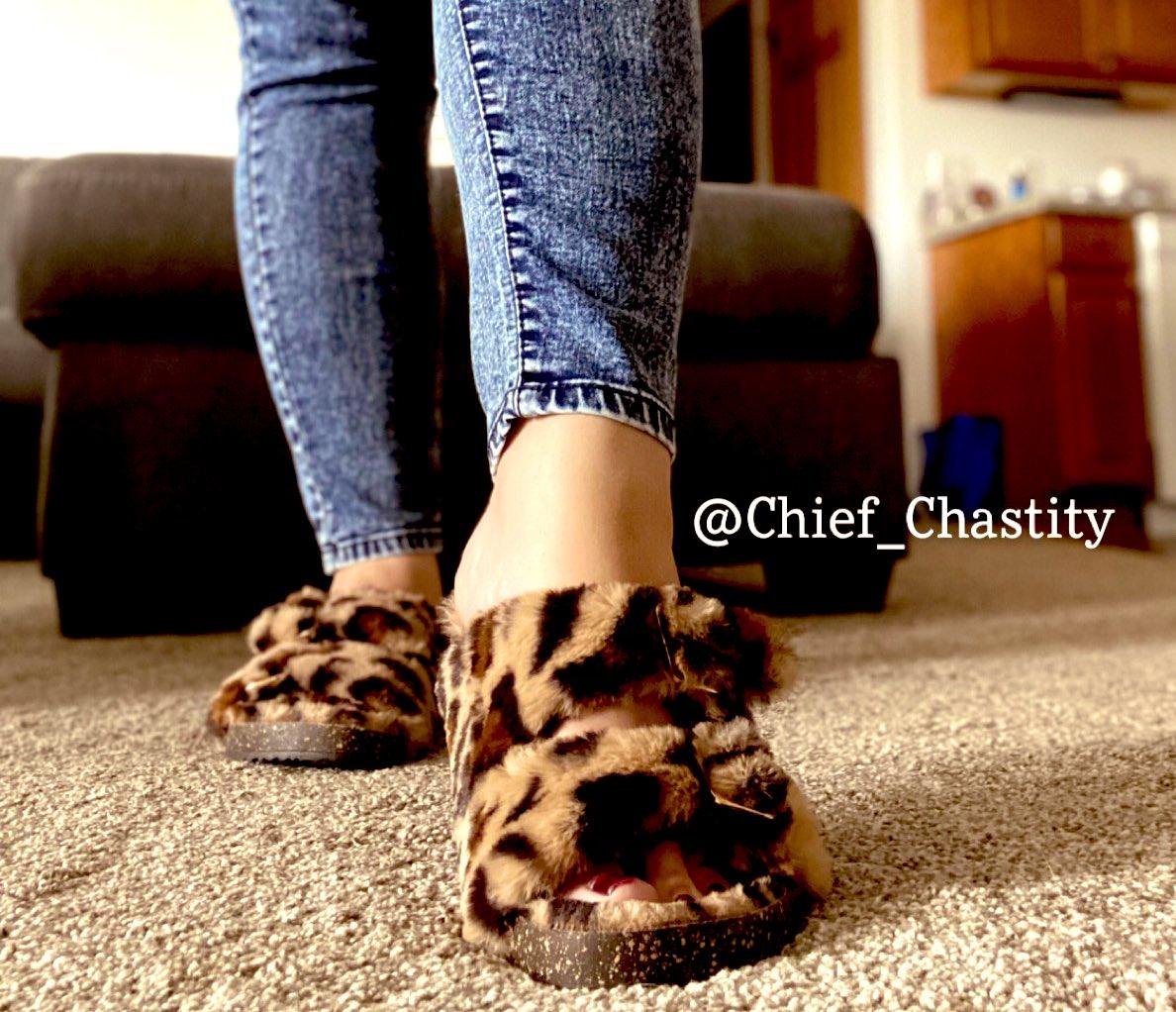🐆 🐆 🐆  #footfetish #footdom #findom  @rtmongrel @rt_feet @FootParadiseRT @RTfdom @RTFD_ https://t.co/wCC0CIekwY
