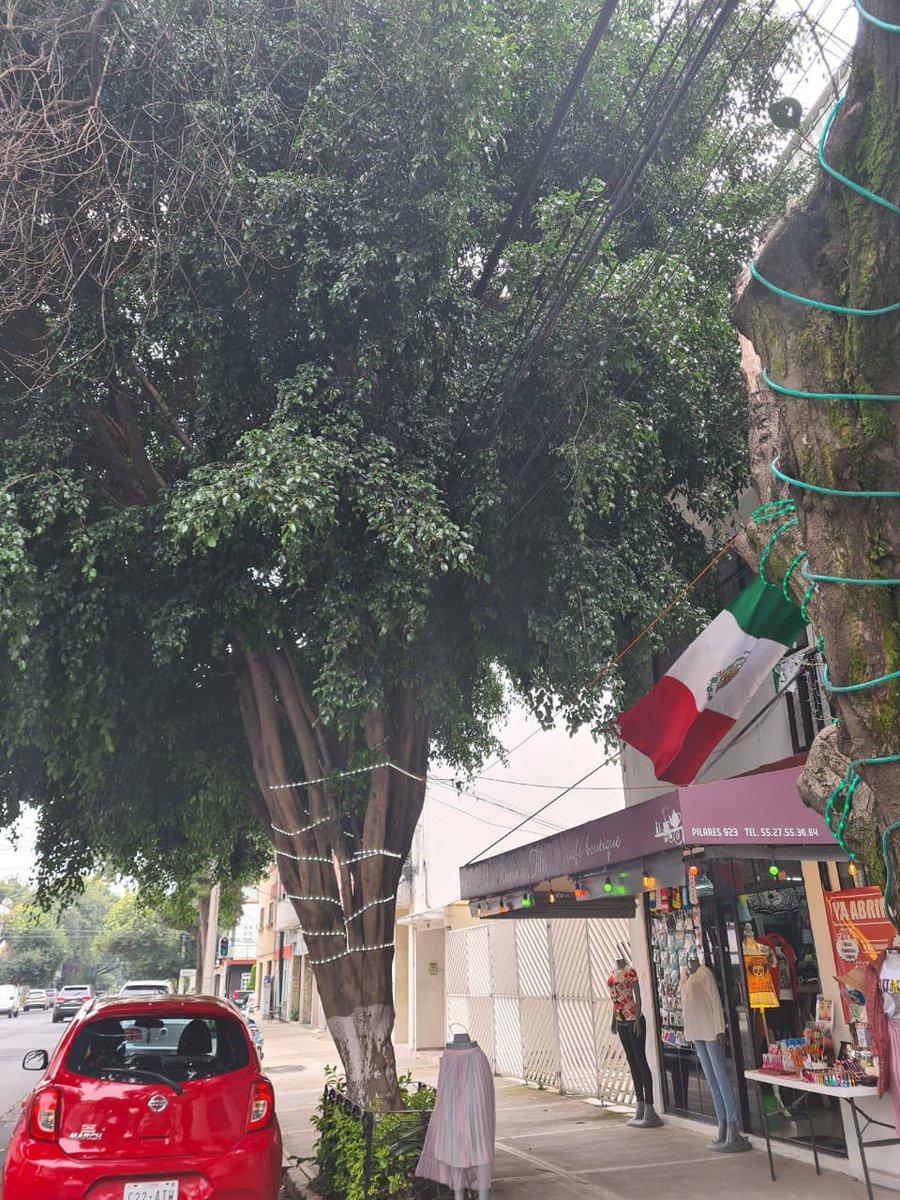 Nos ayudan porfa @AccionesBJ @BJAlcaldia en la poda del árbol ubicado en calle Pilares # 923 entre Uxmal y Xochicalco, aquí en la Letrán Valle...
