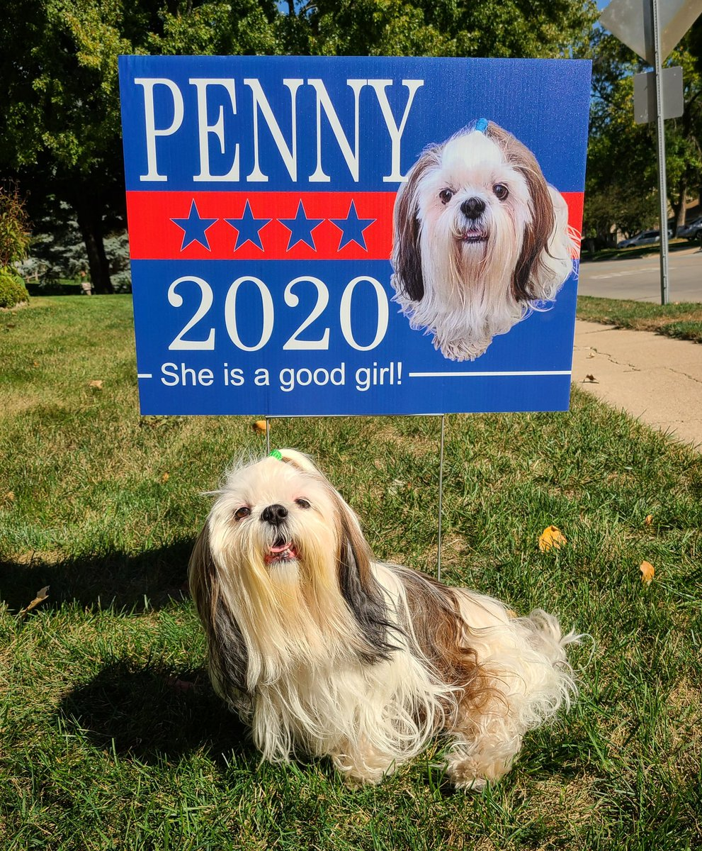 The Good Girl America Needs. #Penny2020 @darth https://t.co/QHSHXgYGr8