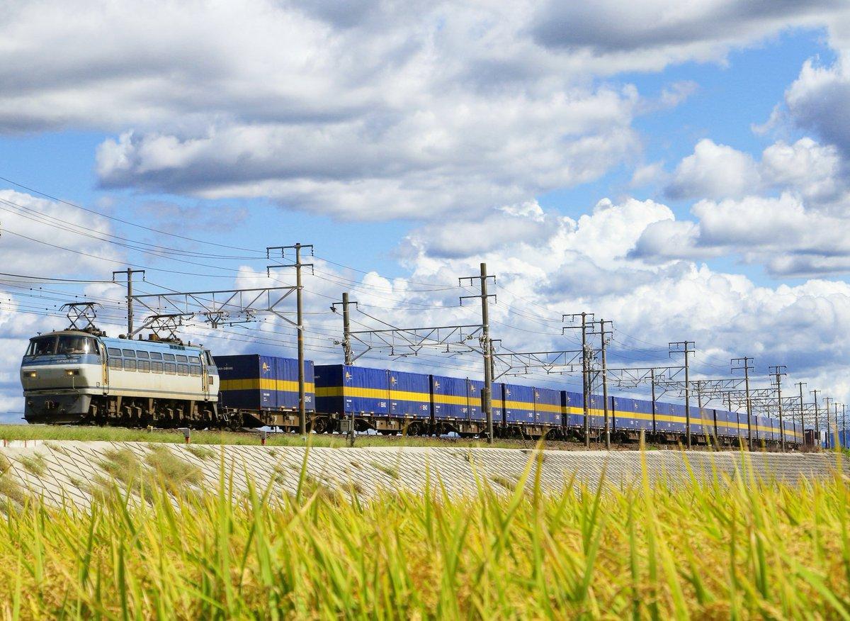 9/27(日) 撮影記録 先日の日曜日、早朝のレール運搬を撮影後、 帰宅途中で聖地巡礼④してきました😀   #東海道線 #貨物列車 #EF66  #EF64 https://t.co/NOWrodeYlw