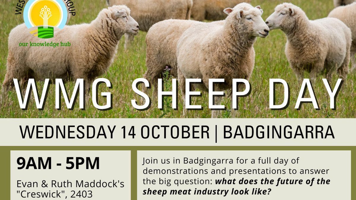 🐏SHEEP PRODUCERS🐏 Join us in Badgingarra on 14 October for a full day of demos and presentations to answer the big question: what does the future of our sheep meat industry look like? Stay tuned for the full agenda later this week! https://t.co/8oFJAjgMxS
