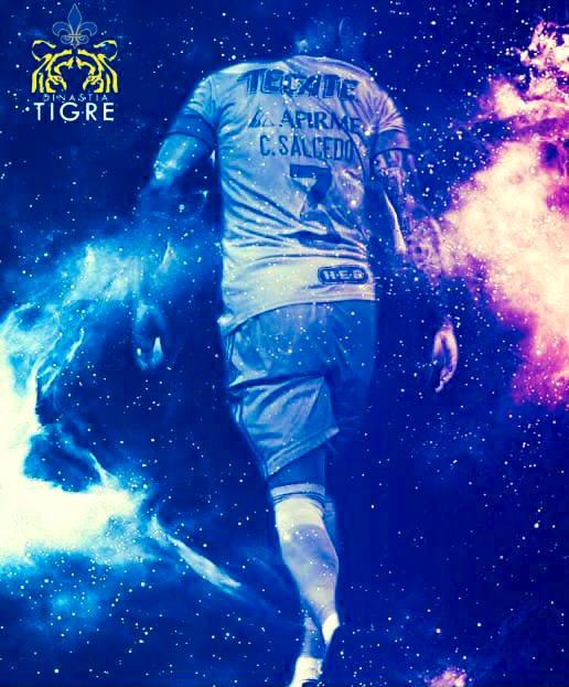 ⚽️ ¿Sabías qué?   El 'Titán' Salcedo inició su carrera futbolística en #Tigres en el 2009.   🔹Pasó por 3a. Div. 🔸Fue Capitán en S-17 🔹Marcó gol en S-17 🔸Usó los No. 147, 75 y 3  Hoy en día, es uno de los mejores centrales de la #LigaBBVAMX.  📝@VladimirGarciaG #DinastíaTigre https://t.co/QF721e7lRx