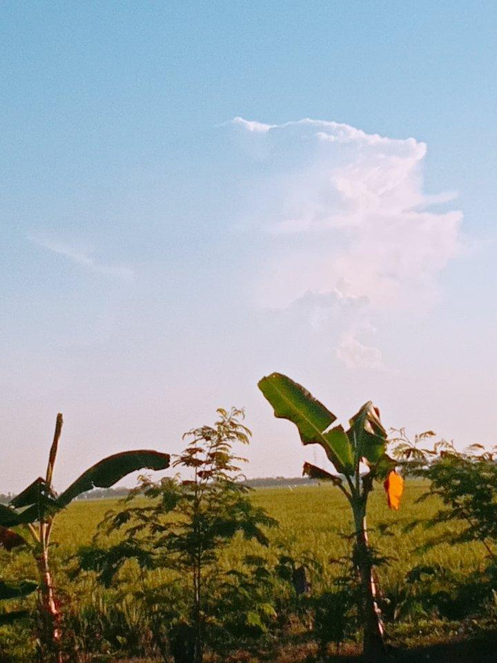 Awan ko berbentuk seperti gunung meletus ya... Semoga aja ga ada bencana lagi aminn... #staysave https://t.co/xy8lLoj9yY