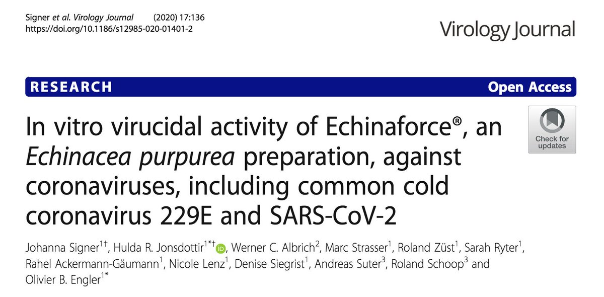 Echinacea inhibits SARS-CoV-2 in vitro, says a @VirologyJ paper: https://t.co/CiHucMa8tR  However, there's a COI: