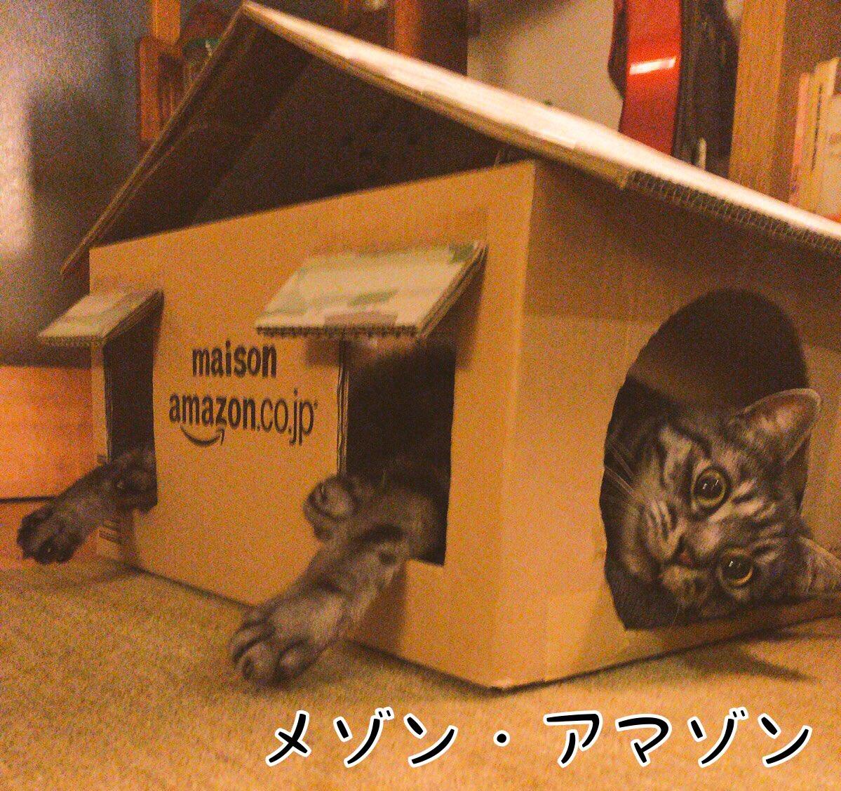 猫ハウス作家として建てた家の数々 https://t.co/Uh8GSQV5L5