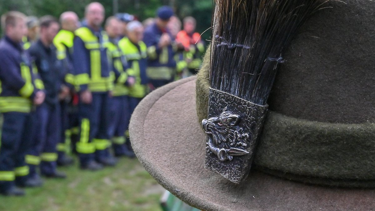 Schweinepest breitet sich aus: Jäger erlegt infiziertes Tier in Brandenburg https://t.co/j1U23mErKC https://t.co/lAj8IZjydq