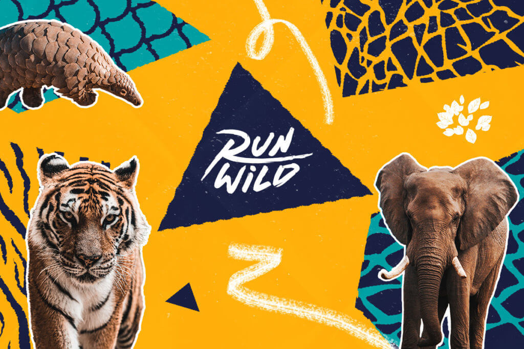 Do you want to raise your voice #ForNature?  Join over 800,000 runners in supporting the call for greater biodiversity protection by taking part in the #RunWild challenge - learn more here and get moving🏃🏽♀️ https://t.co/EPLcVKhecm  #UNGA https://t.co/QOd7kkbVIw