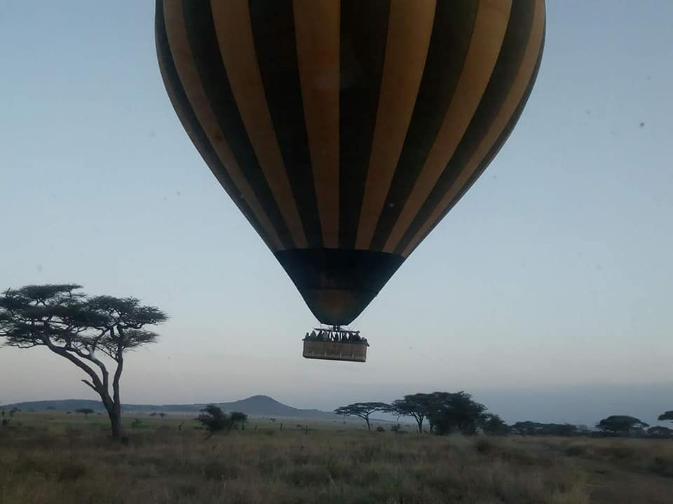 Imagine how much more you would see than if in a jeep! https://t.co/6yMDviH1xZ jambo@jamboafricaadventures.com  Tel +255 743 813 033 #hotairballoon #hotairballoons #balloons #adventure #adventures #safarijeep #jeeptour #jeeptours #offroad #offroading #africa #african #safari https://t.co/okxfX4puXV
