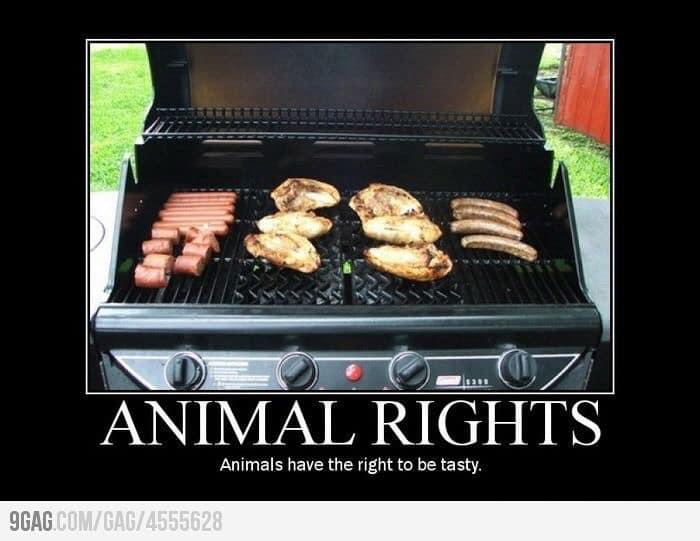 True! 🥩🍗🍖🌭🍔#getinmybelly #bbq #ribs #wings #bbqrub #bbqrubs #bbqsauce #pitmaster #pitmasters #pelletgrill #barrelsmoker #carnivore #meat #pork #steak #bbqribs #grilling #Hickmansbbq https://t.co/gJQSm1TtCj