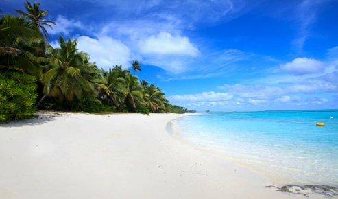 Fine white sand... #planetearth #planetguard #nature #landscape #photo #travel #trekking #camping #kayak #surfing #dreams #lovers #spa #peace #life #hope #stillness #relax #harmony #palm #coast #sand #beach #island #sun #water #seaside #sea #oceans #morning https://t.co/vrsZnENM6k