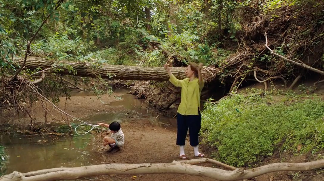 """Lost In Film on Twitter: """"'Minari' (2020, Lee Isaac Chung). Cinematography:  Lachlan Milne.… """""""