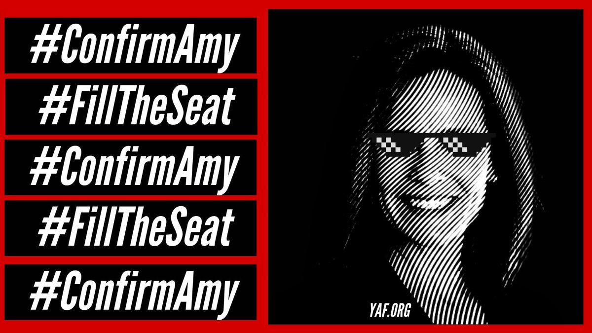 Judge Amy Coney Barrett has proven herself to be a staunch defender of America's precious freedoms and Constitution, and is eminently qualified to serve on the United States Supreme Court.  It's time to #FillTheSeat. It's time to #ConfirmAmy. https://t.co/Q8jXWwllbr