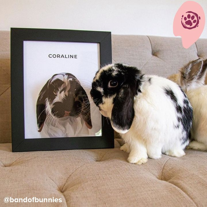 Everybunny needs to see this bunny🐰💖  📸: @bandofbunnies  Upload a photo of your furbaby at https://t.co/52flpPm1wZ and get a custom portrait of your pet just like Coraline!  #iconicpaw #rabbit #bunny #pets #painting #art #illustration https://t.co/36XW45bn4F