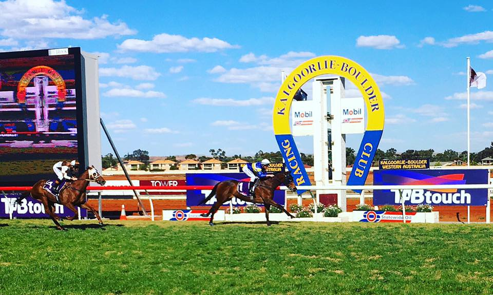 #TheLegUp is in Town!!!  Check out the Saturday 3 October #Kalgoorlie Cup Day edition of @thoroheadsWA popular meeting preview on @ozrace ...  READ: https://t.co/Zk3hYlsKUJ  @kalracing @TAB_touch @TABradio @theracesWA https://t.co/Lpj7Q6WBKF