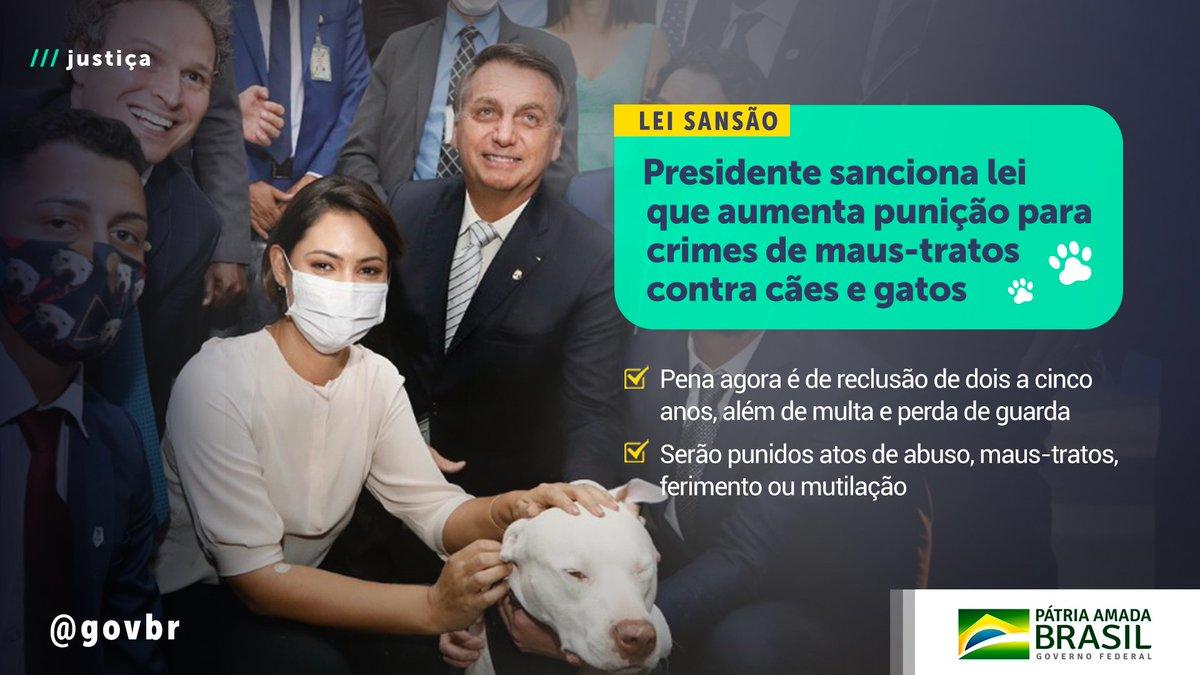 """Governo do Brasil on Twitter: """"Agora, vai de 2 a 5 anos de reclusão, além  de multa, e perda da guarda do animal. O autor do crime será investigado e  não mais"""