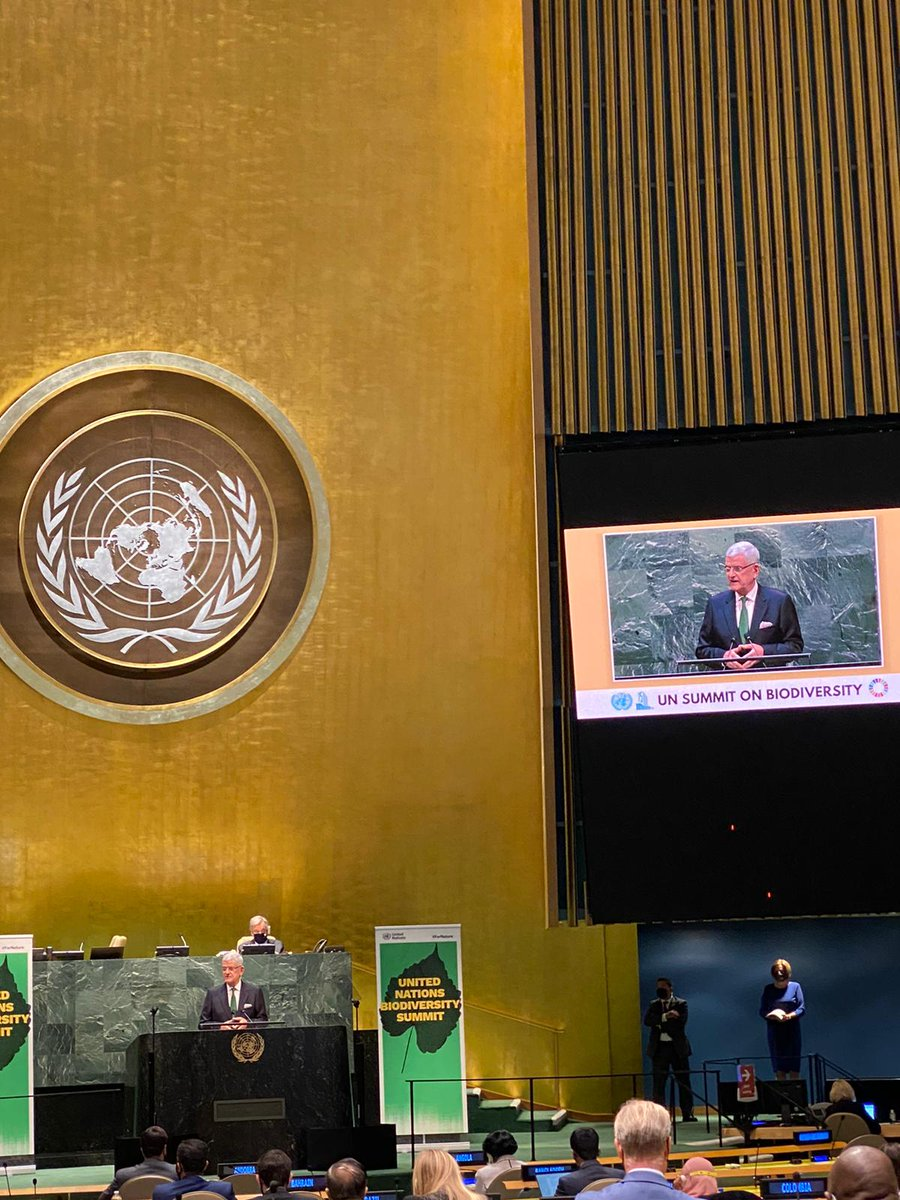"At the #UNGA75 Summit on #Biodiversity2020, @UN_PGA reminds us that ""an investment in the health of our planet is an investment in our future."" Let's live up to SDG14 & protect #oceans from global warming, over-fishing, & environmental mismanagement.  @unbiodiversity  #ForNature https://t.co/S4s7XEsicR"