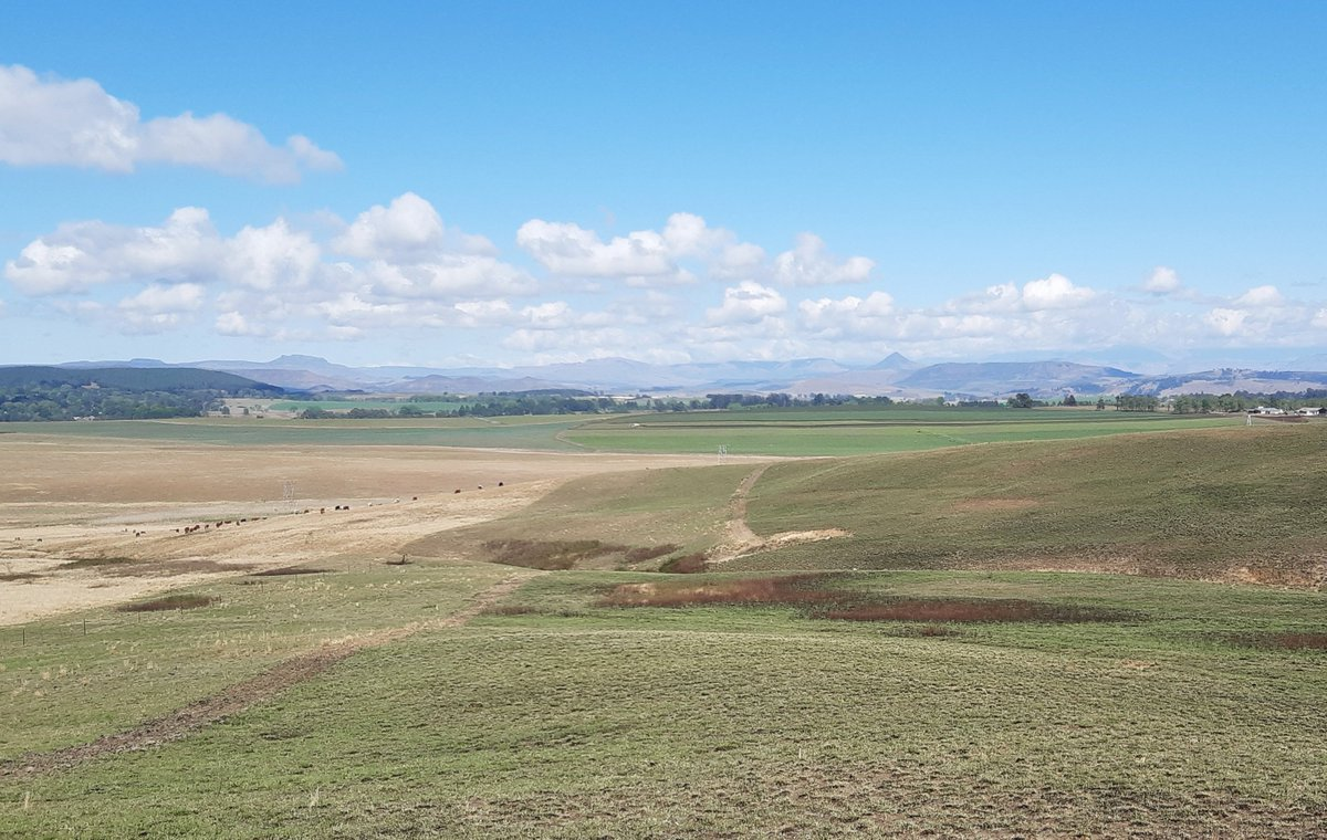 After a week of grim weather, the sun's out again in Nottingham Road this morning. Hope you have a great, productive morning wherever you are. #thursdaymorning #ThursdayThoughts #kznmidlands #rural #Countryside #SouthAfrica @KZNMidlands @DrakensbergLove @MidlandsMeander https://t.co/uIPVcptsnH