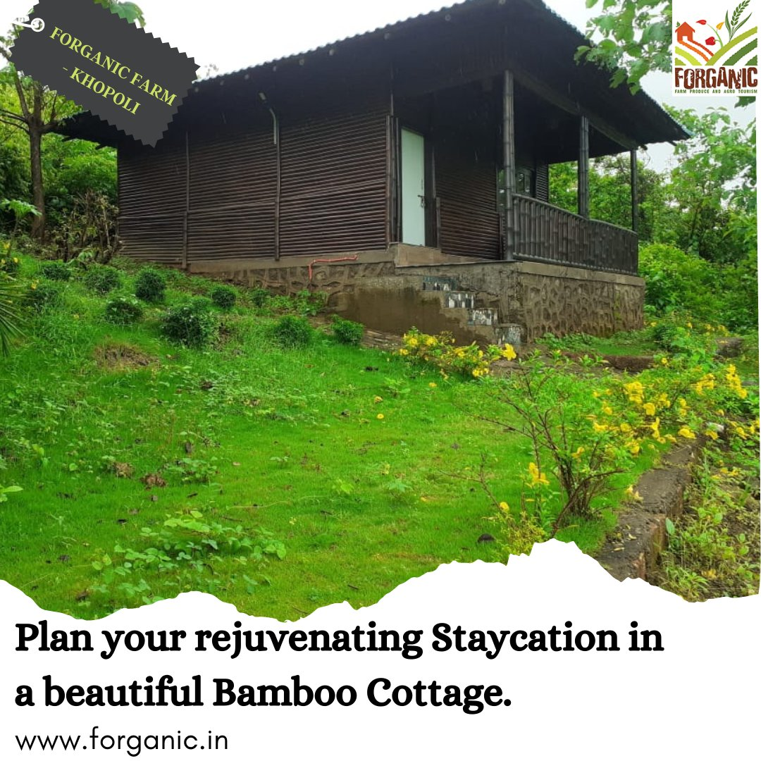 Plan a Staycation in the spacious Bamboo Cottage at Forganic Farms. Celebrate your days of isolation amidst nature.  Book Now at- https://t.co/nHkCBmHv2G . . . #forganicfarm #khopoli #stayhere #staysafe #travel #villasofinstagram #staycation #traveldiaries #farms #nature https://t.co/pM3K7s5Ifb