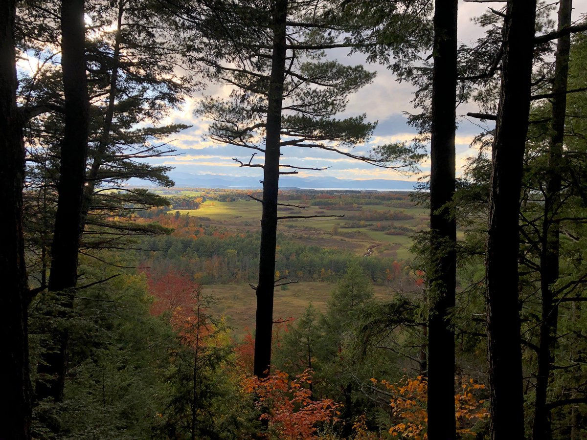 Can't beat a #VTview in #fall #rootedinVermont #ConservationMatters https://t.co/hxusQfSb18