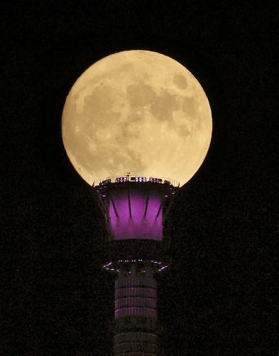 【綺麗】スカイツリーの「上に咲く」中秋の名月 https://t.co/6SDlQd9LVx  この時期は夏に比べて大気中の水蒸気が少なくなり、月がくっきり見えやすい。国立天文台によると、満月になるのは2日の早朝という。 https://t.co/nzonXryWBf