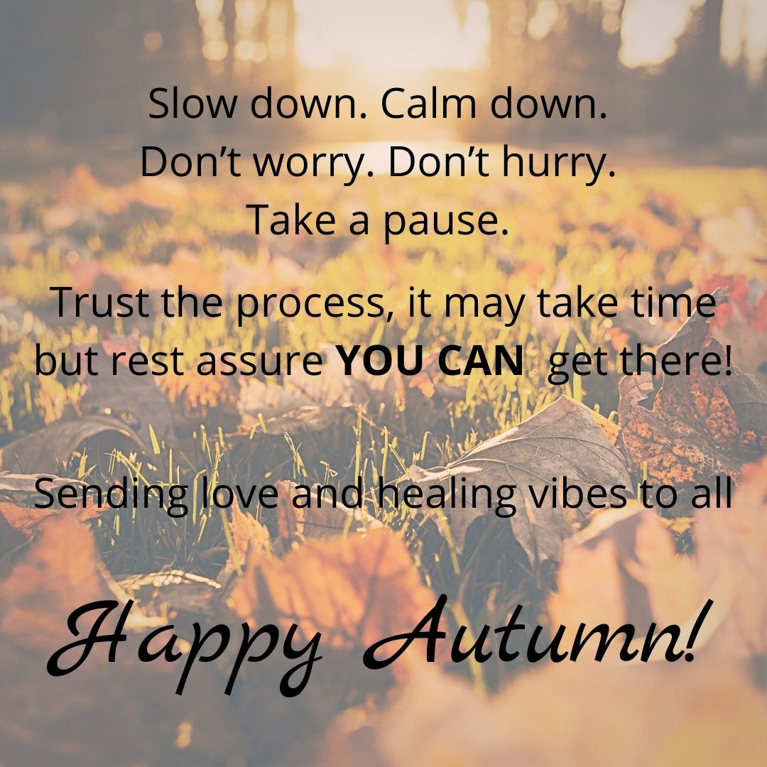 Happy #Autumn Everyone🍂 A beautiful time of year full of transition & change, cozy nights, comforting food, & #AutumnLeaves what represents #AutumnEquinox for you?  #cozytober #lovenature #aberdeenshire #stroud #scotland #selfcare #mindfulness #Wellbeing #affirmation #livewell https://t.co/ak8huPtwNT