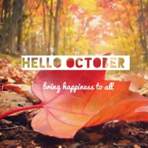 Hello October. Bring happiness to the all and all things pumpkin spice! 🍂🍁🥧☕