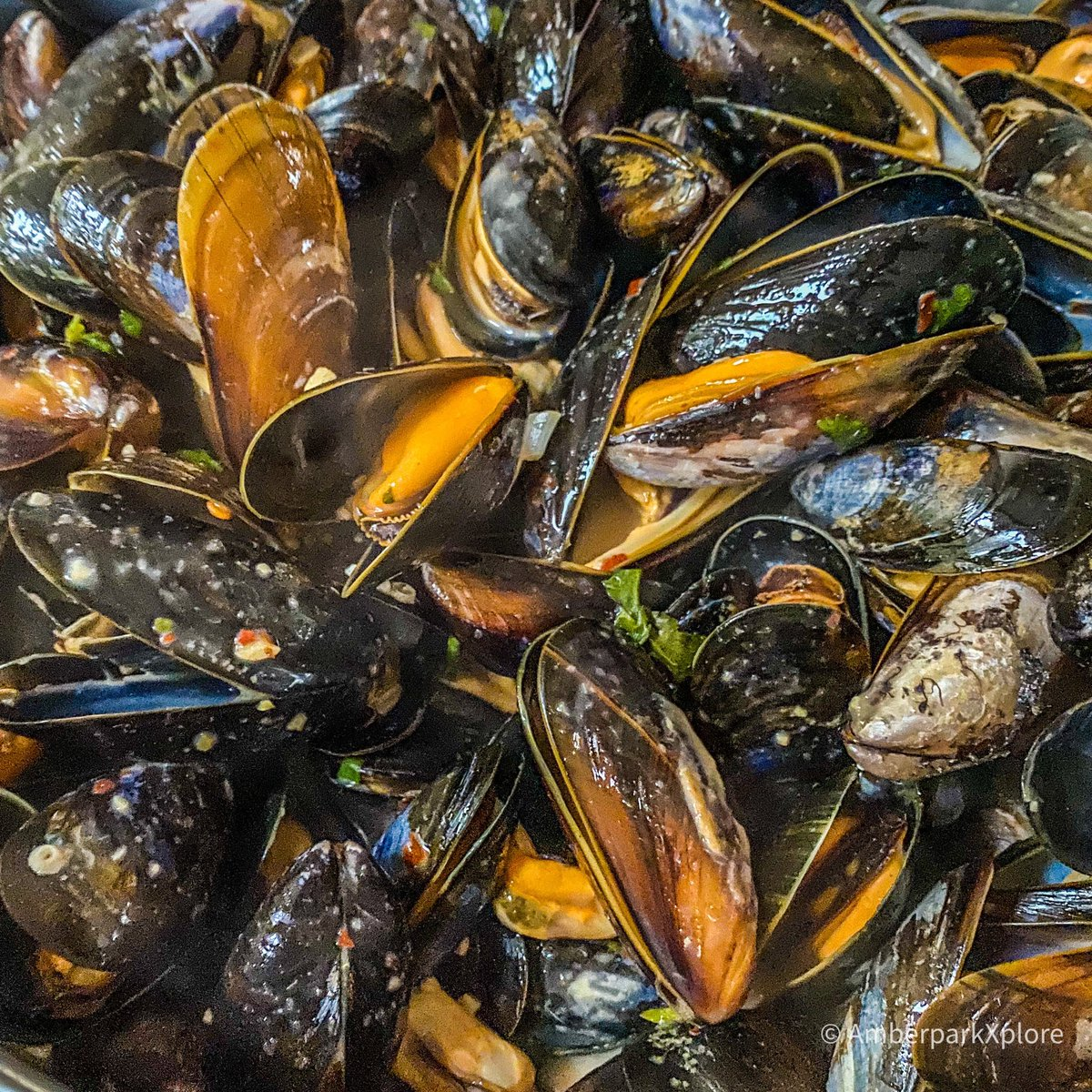Home cooked #thai #coconut #arisaig #mussels Mussels from Andy Race Fish Merchants, Mallaig  #seafood @SeafoodFromScot @ScottishSeafood 2 1/2 kilos gone in 15mins! 😉mallaig #scotlandhour https://t.co/OGZAlp42rI