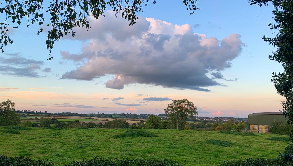 Good evening from over the hedge. #Thursday #Derbyshire https://t.co/FStnIjkTBy