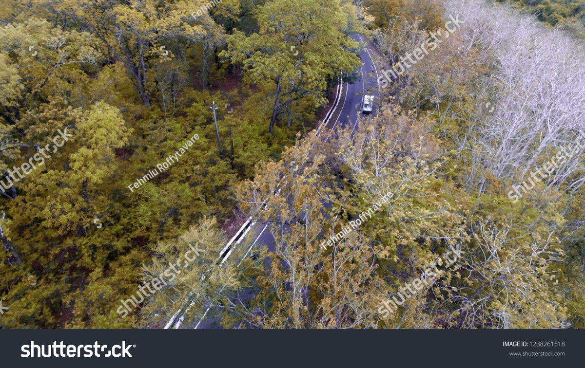 crossing the #road in the middle of the #forest in dry season.  photo ID: 1238261518 https://t.co/3GVLyzv1Rn  #aerial #drone #dryseason #weather #climate #ClimateActionNow #transportation #infrastructure #trees #dailynews #indonesia #today #photostock #shutterstock https://t.co/yM467jU67V