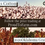 Image for the Tweet beginning: 2020 Texas Cotton and 2020