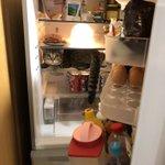 なんでそこにいるの!冷蔵庫の中見たらお酒と卵と猫しかいない…猫の卵とじ丼にでもするか…ってネコ!??