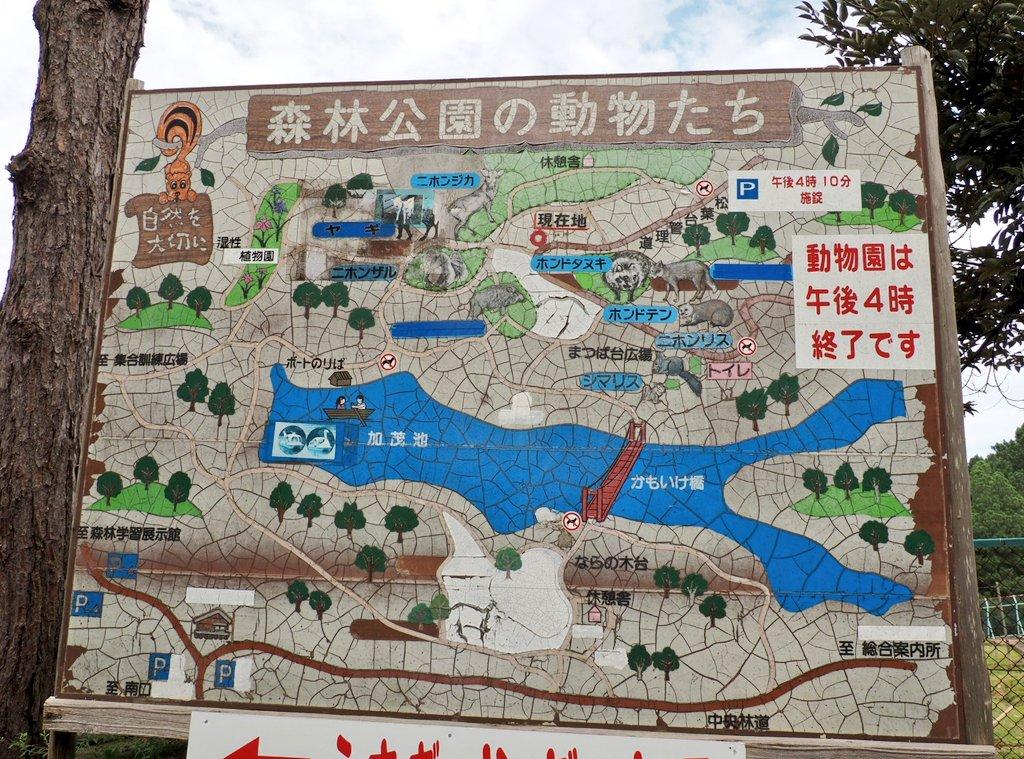 先月、石川県森林公園へ行って来ました! #石川県森林公園 https://t.co/o5bBWTeB5j