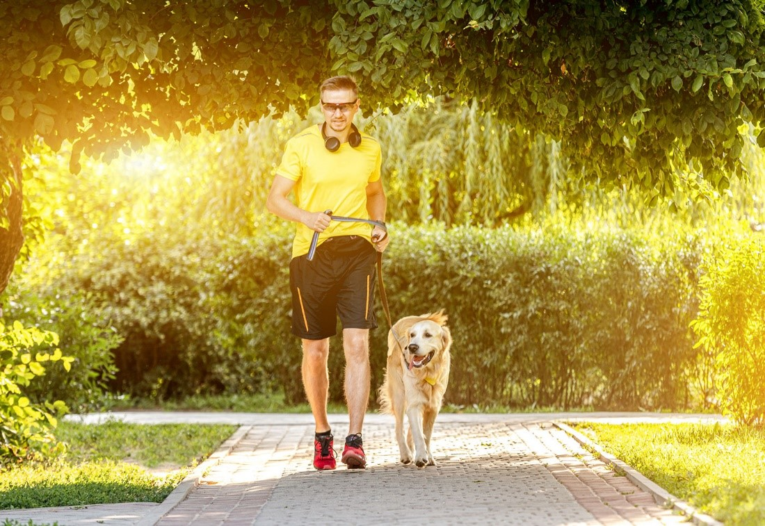 This fall, getting exercise also helps dogs get homes. From Oct 16 to 25, the Virtual Music City Run/Walk benefits @PedigreeFound's shelter/rescue grant program. Join the race and help dogs – run anywhere in the world! Register: https://t.co/pORFg25ZgZ #Run4Rescue https://t.co/cPWWZp0Twg
