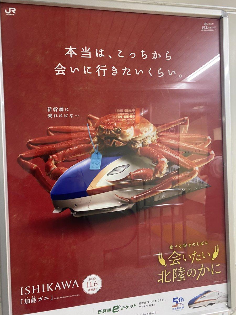 日本北陸新幹線似乎在瘋狂地發廣告宣傳螃蟹? EjX0OqdVcAE9kFB