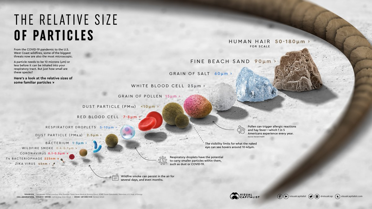 Visualizing the Relative Size of Particles 🦠  Full version: https://t.co/jNyh0OFvor https://t.co/sBmqoqCznd
