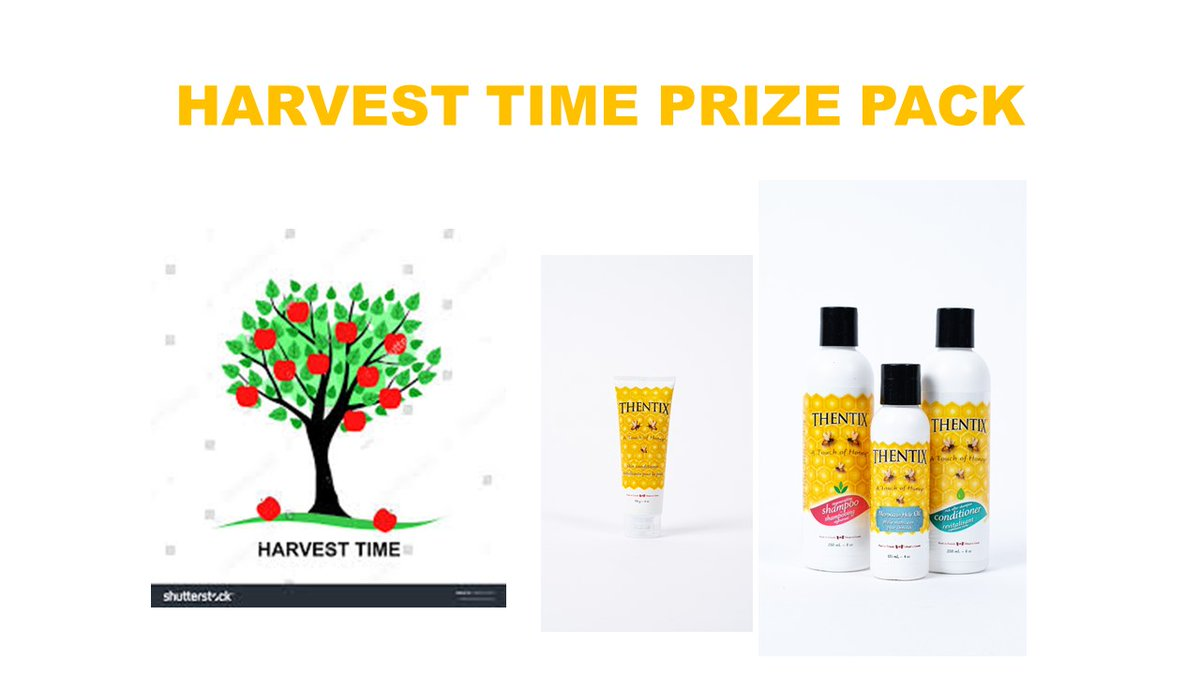 """Triple Entry SATURDAY. Follow & RT for 3 ENTRIES at @thentixskin to #WIN this """"Harvest Time Hair Care"""" #PrizePack. #CanWin. 3 prize packs available. Open to CDN / CONUS residents only. Ends October 18. See #Contest rules at https://t.co/nVxsQ7PMKc https://t.co/GE5IQDxbt0"""