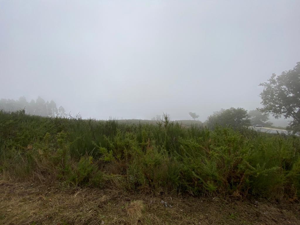 ERC: Rally Fafe Montelongo [2-4 Octubre] - Página 3 EjaecTgWoAAludZ?format=jpg&name=medium