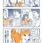 喜びのあまりにバイブレーション状態に?!可愛すぎる犬を描いた漫画が話題に!