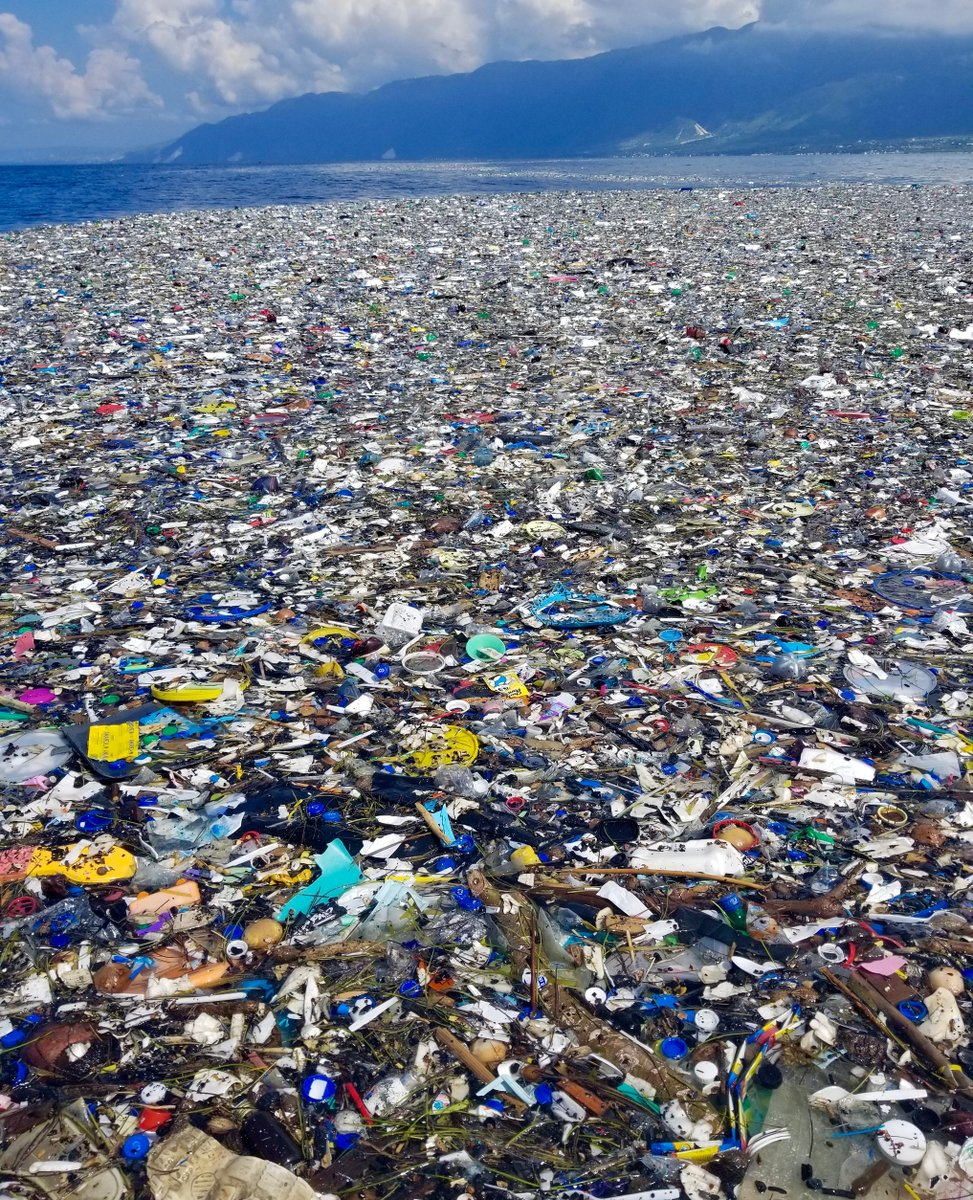 These shocking images of the ocean plastic crisis were captured by our cleanup crews just days ago off the west coast of Haiti. ⁠ Did you know that huge patches of plastic pollution like this are created by the stirring of ocean currents?  ⁠