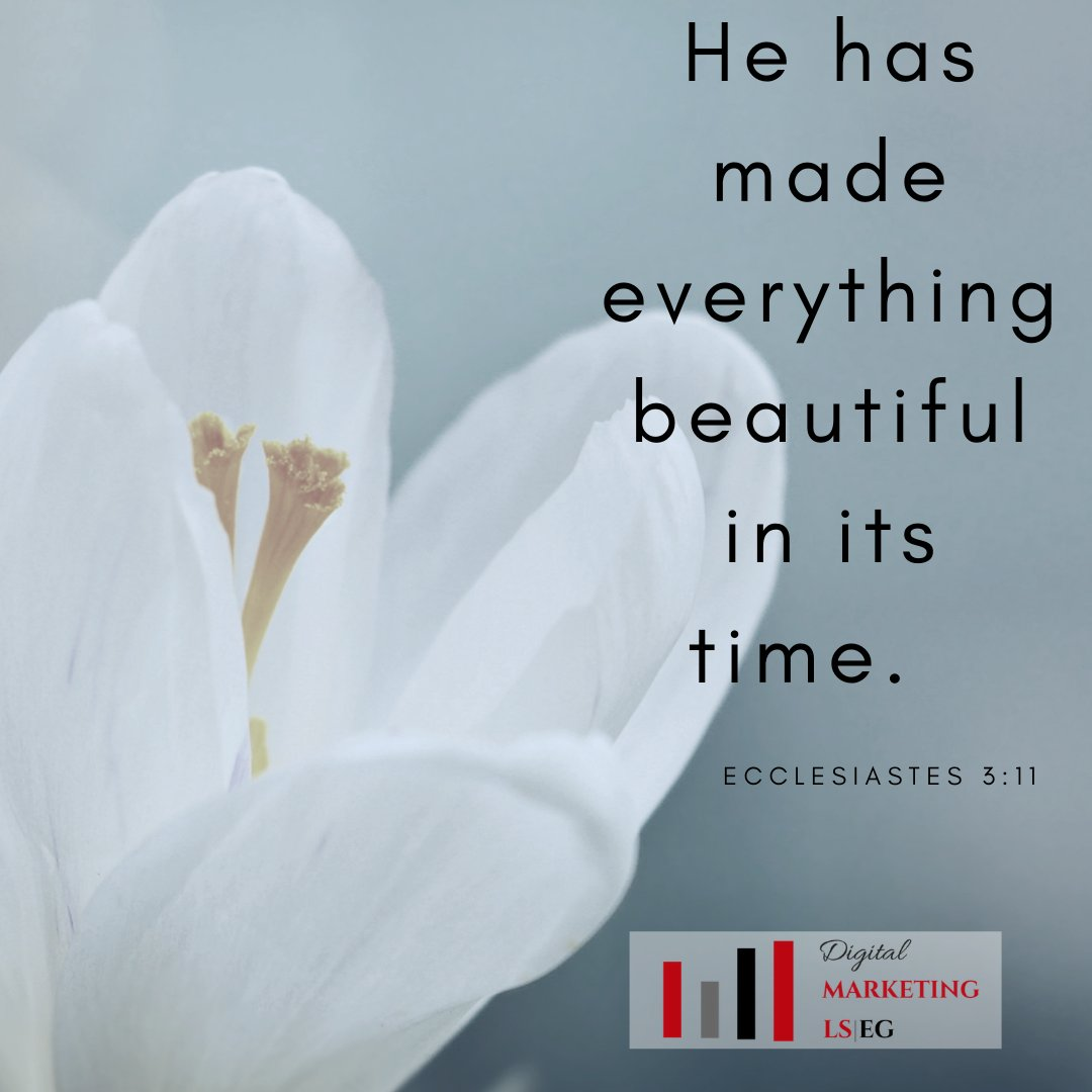 He has made everything beautiful in its time.  Ecclesiastes 3:11 #faithinspired #livefullyalive #liveloved https://t.co/uUqpAPAIJv