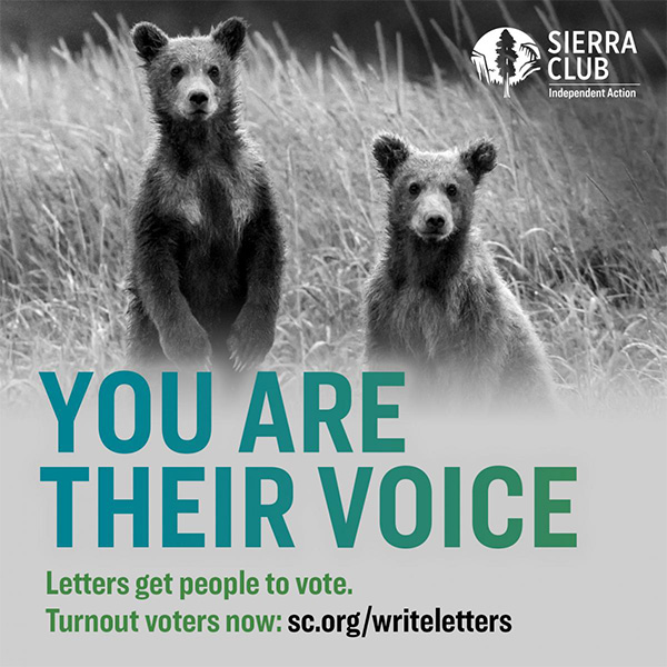 Want to do more before the Nov 3 election? Write personalized letters to infrequent voters encouraging them to vote!    @SierraClub #Vote2020 #PeoplePlanetPower