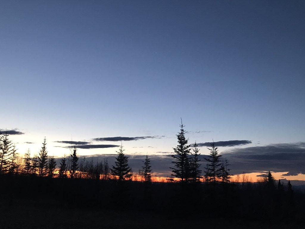 最近の夜明けは、1度から5度前後、今週からマイナス気温が多くなるらしい。 空気中の水蒸気もいつも以上に少なくなり、超乾燥状態で夜空もやたらくっきり見えるようになります。 天の川も鮮明に見え、オーロラも綺麗な季節がやってきますね。 #フェアバンクス #オーロラ #キャンプ好きと繋がりたい https://t.co/nTK8AMNt2x